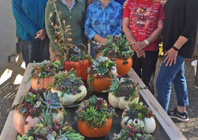 Pumpkin Centrepiece Workshop 2017