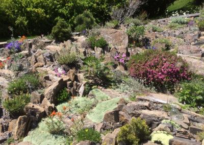 Rundlestone Scree Crevice Garden