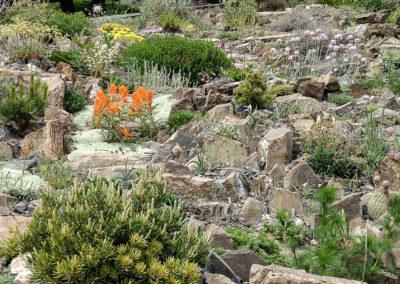 Rundlestone Vertical Crevice Garden