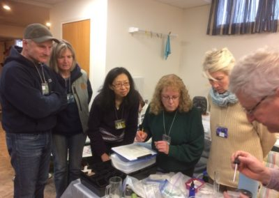 Warm germination, GA3 treatment Workshop