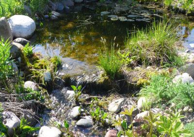 Fieldstone Garden and Pond