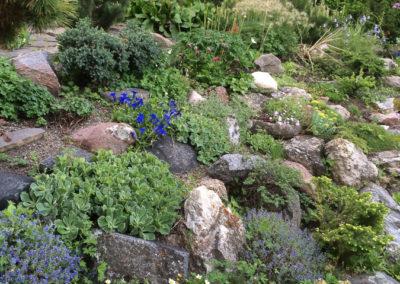 Fieldstone Rock Garden