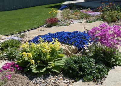 Tufa and Sandstone Rock Garden